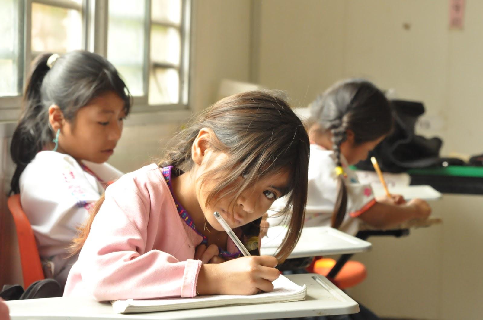 Deslegitimación y desplazamiento: La Educación Intercultural Bilingüe en Apurímac