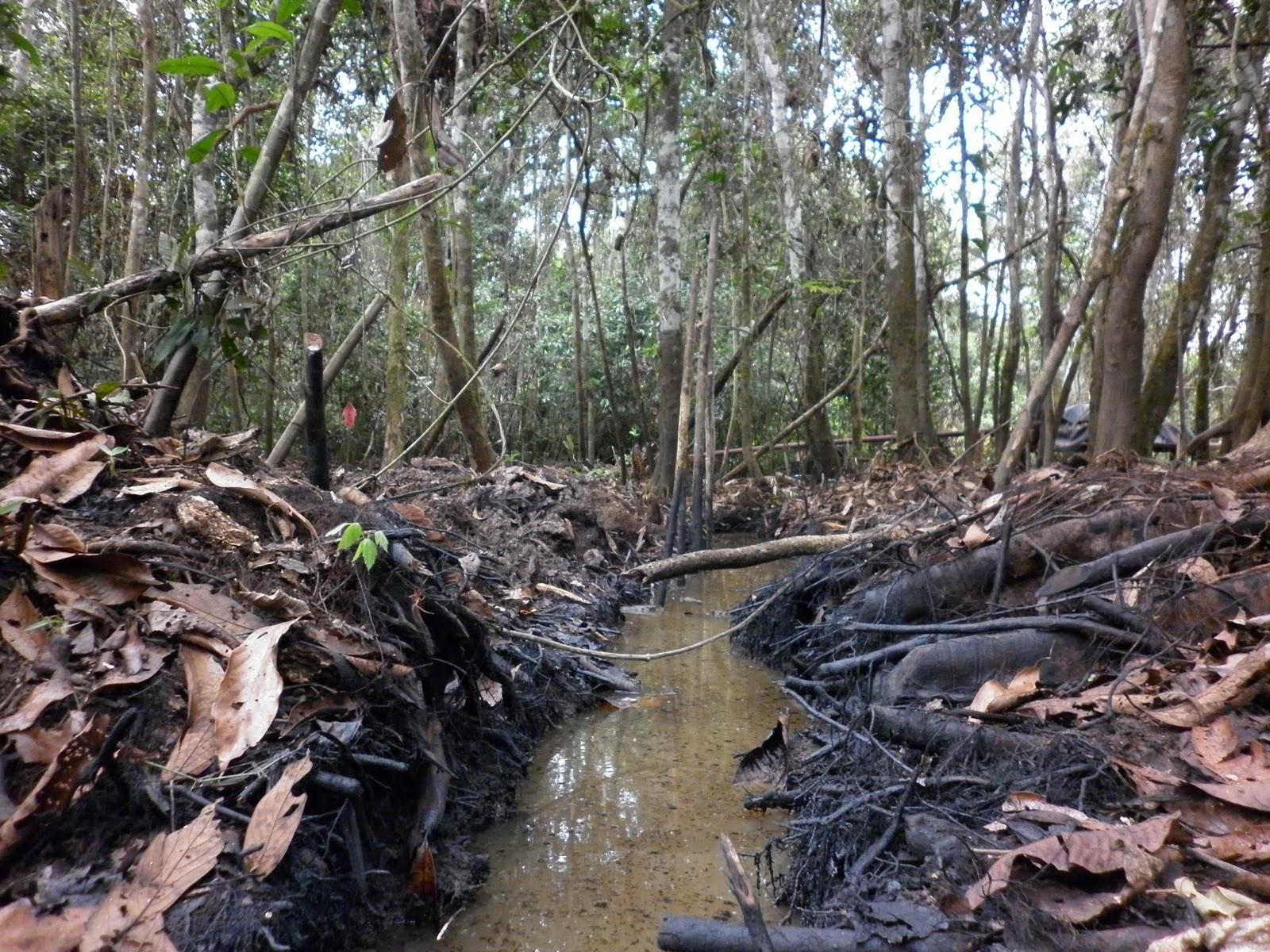 Análisis de los derrames de petróleo en Amazonas y Loreto desde la perspectiva de la construcción social de los problemas socioambientales