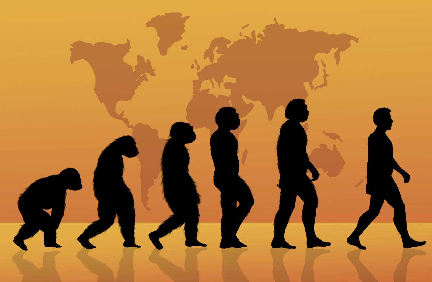 Darwinismo Social: El legado de un fantasma o la responsabilidad de la ciencia