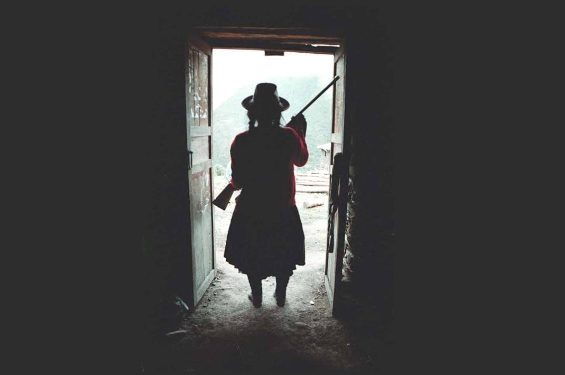 Memoria heroica y memorias subrogadas: Los campesinos y la violencia política en el Perú