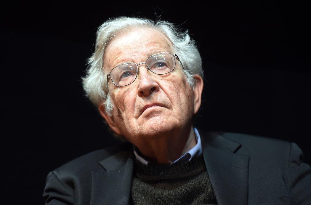 Noam Chomsky para Pólemos: sobre los derechos de la Naturaleza, la Carta de los Bosques y el futuro de la humanidad