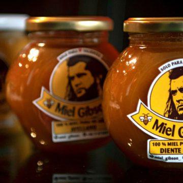 Caso «Miel Gibson»: La imagen personal como marca comercial