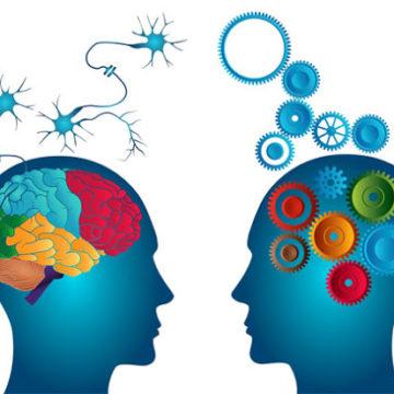 Neurolinguistica, testimonios y perspectivas de género
