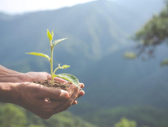 Defensores ambientales: una agenda pendiente en el Perú